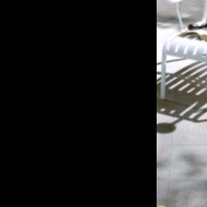 Fensterfolie Schwarz, Hifina Fensterfolie Sichtschutzfolie Schwarz/Fenster Folie Selbstklebend/Fensterfolie Sichtschutz (45 * 200cm)