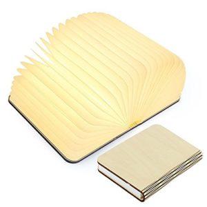Große LED Buch lampe in Buch Form Holzbuch mit 2500 mAh Akku Lithium Nachttischlampe Nachtlicht dekorative Lampen Ölbildscheibe Papier + Holz Einband, Maße 22x3x17.5 cm