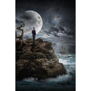 Pitaara Box Lonely Girl on A Rock by The Sea in A Storm Unframed Canvas Painting
