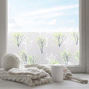 fancy-fix selbsthaftende und Statische Fensterfolie mit Löwenzahn-Motiv – UV-Schutz & Sichtschutz – Milchglasfolie zur Dekoration und Schutz der Privatsphäre (43 x 200 cm)
