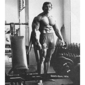 Arnold Schwarzenegger (24inch x 27inch / 60cm x 68cm) Silk Print Poster – Seide Plakat – 4EAB14