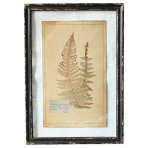 Better & Best 2351194Wandbild Glas-Wand mit Gravur von Zweig groß mit grünen Blättern, Hintergrund, Rahmen schwarz, 40x 58x 2cm
