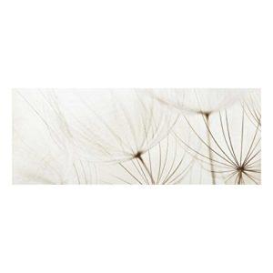 Bilderwelten Top Blumen Glasbilder