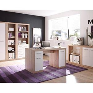 "Büro-Set Büroeinrichtung Büromöbel Heimbüro Büroprogramm Bürokombi ""Lisetta III"""