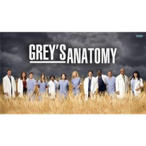 Greys Anatomy (43inch x 24inch / 107cm x 60cm) Silk Print Poster – Seide Plakat – 3F8313