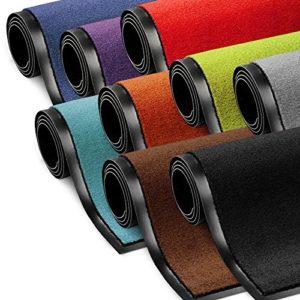 Schmutzfangmatte ColorLine | Türmatte in vielen Größen | Fußmatte für Innenbereich | rutschfester Teppich für Flur, Haustür, Eingang, Eingangsbereich, Vorzimmer