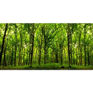 Augenblicke Wandbilder 120x60cm – Fotodruck auf Leinwand und Rahmen Wald Bäume Natur Sonnenstrahlen – Leinwandbild auf…