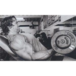 Arnold Schwarzenegger (40inch x 24inch / 99cm x 60cm) Silk Print Poster – Seide Plakat – 673A34