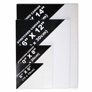 BELLE VOUS Blanko Leinwand mit Keilrahmen (4 Größen) 15×15 cm, 20×25 cm, 30×40 cm, 35×50 cm – Bespannter Rahmen…