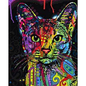 Dreamsy Malen nach Zahlen Kit, DIY Ölgemälde Zeichnung Bunte Katze Leinwand mit Pinsel Dekor Dekorationen Geschenke – 16 x 20 Zoll mit Rahmen
