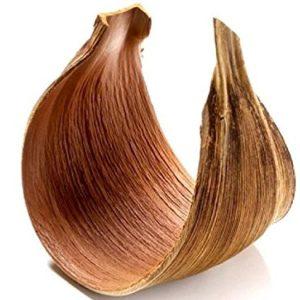 NaDeco Kokosblatt Galera geschlossen Kokosblatt gebogen Palmen Blatt Palmenschale Kokosschale Dekoblatt