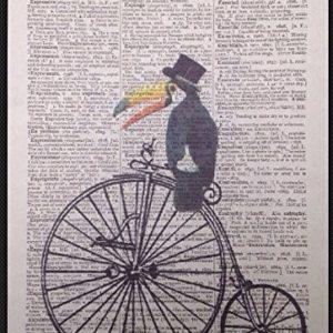 Parksmoonprints Vintage Toucan Wörterbuch Druck Seite Wandbild Penny Farthing Vogel Bike Witz Tier Funky Humanisiert